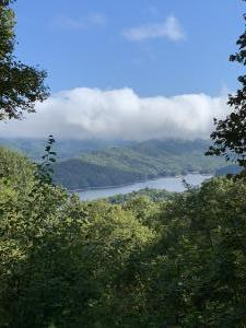 North Carolina / Tennessee 2020