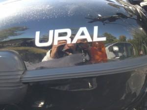 Joe Kalal's Ural